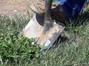 Reverse shovelware is no better than theoriginal